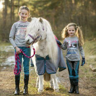 Paard & pony